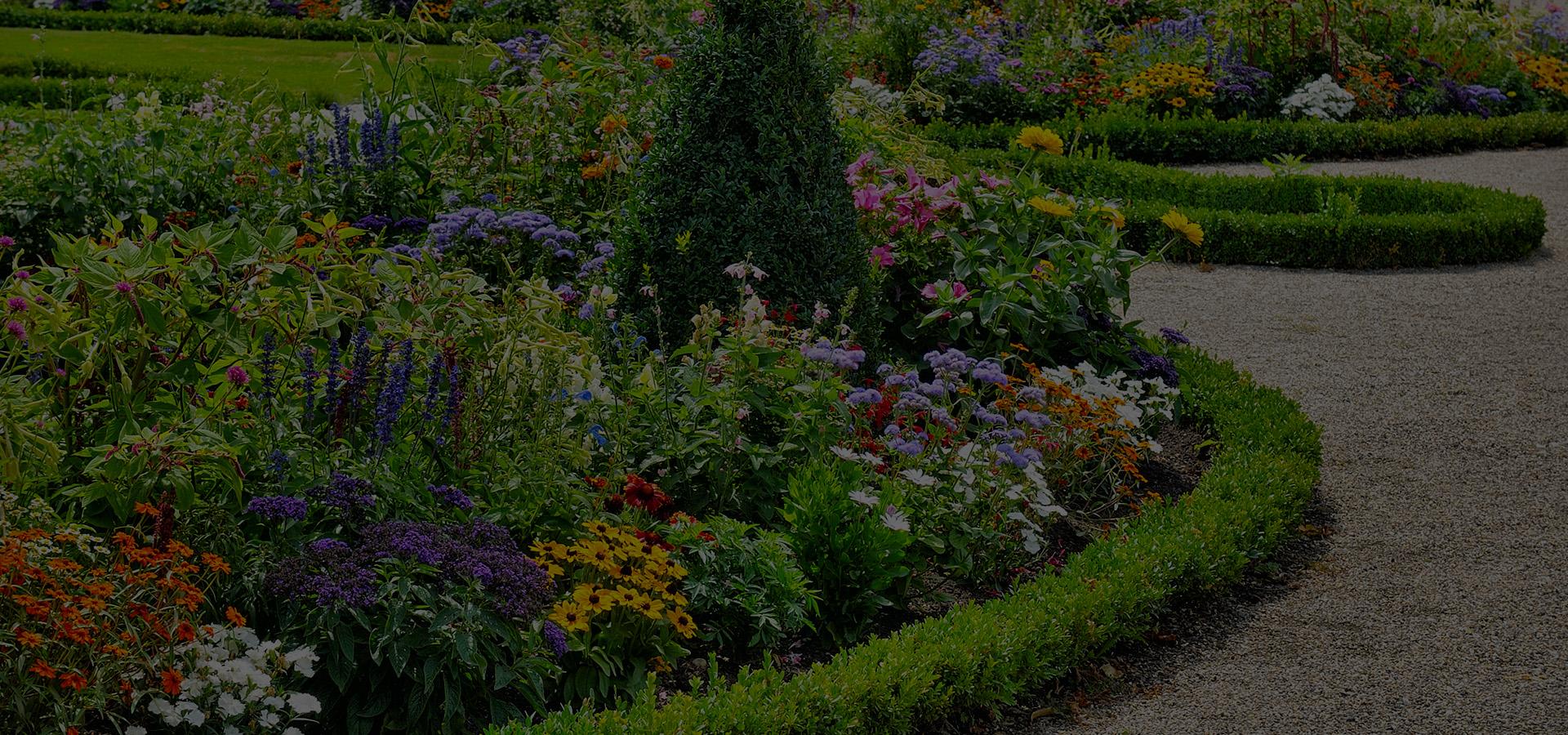 Les fleurs et les plantes ornementales